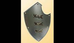 Настенный щит с гербом Три льва, серый