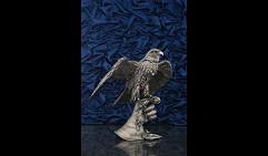 Сокол на перчатке с открытыми крыльями