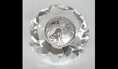 Кристалл знак зодиака Водолей