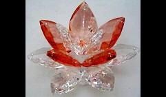 Лотос (Размер 4), Linea Orange
