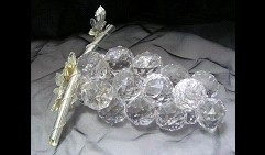 Виноградная лоза Debora Carlucci (размер 3)