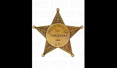 Бэйдж полицейского Американской Индейской Полиции