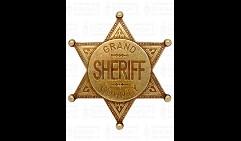 Значок окружного шерифа США